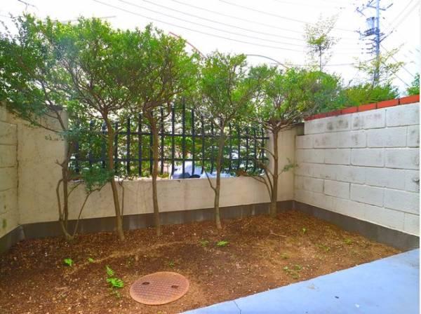 広々専用庭付きで開放感を演出。ガーデニングやリラックス空間としてもお使いいただけます。