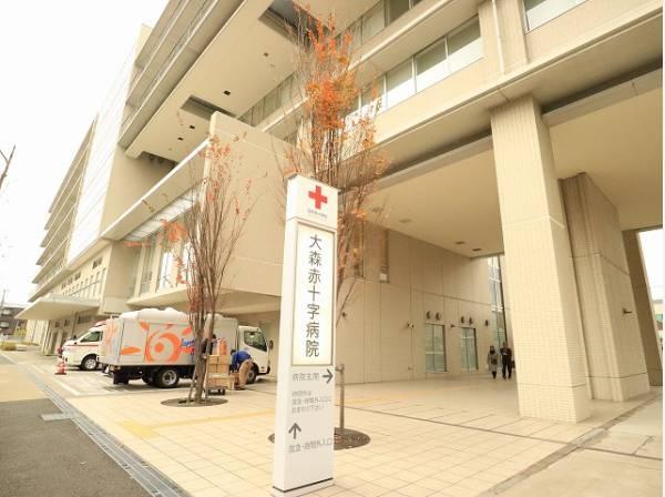 日本赤十字社東京都支部大森赤十字病院まで徒歩約11分 約900m