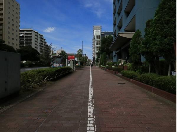 広々とした前面道路はしっかり整備され、小さなお子様にも安心です。