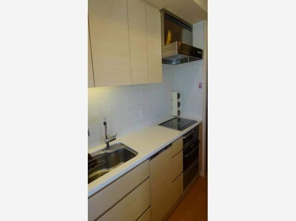 食洗機・浄水器がついたシステムキッチン。上部の吊戸棚もあり、たくさん収納できます。家事の負担を軽減してくれるアイテム、食器洗浄機は重宝するはずです。