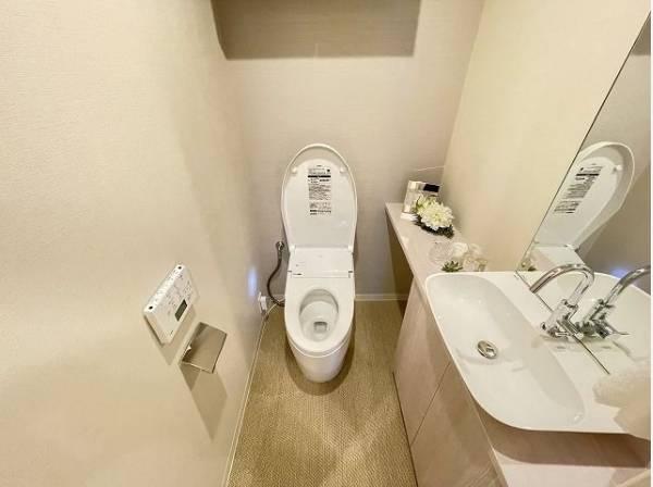 その場ですぐに手を洗える手洗いカウンター付きのトイレ。