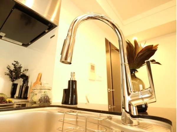 オシャレなデザインで使い勝手も良く、大きな物も洗いやすいタイプになっています。