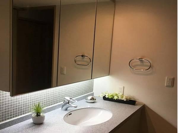 石鹸や洗顔剤、シャンプー、歯ブラシ、歯磨きなどを収納できる三面鏡のシャンプードレッサー。様々な用品を仮置きできる場所も確保されています。水栓はシャワー付きなのでお掃除がラクです。