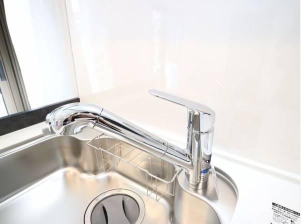 浄水器内蔵型ハンドシャワー水栓を採用。ワンタッチ式で浄水機能に切り替えができます。