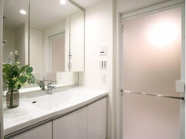 三面鏡化粧台。鏡裏には必要な物がきちんと収まる収納スペースを確保しています。