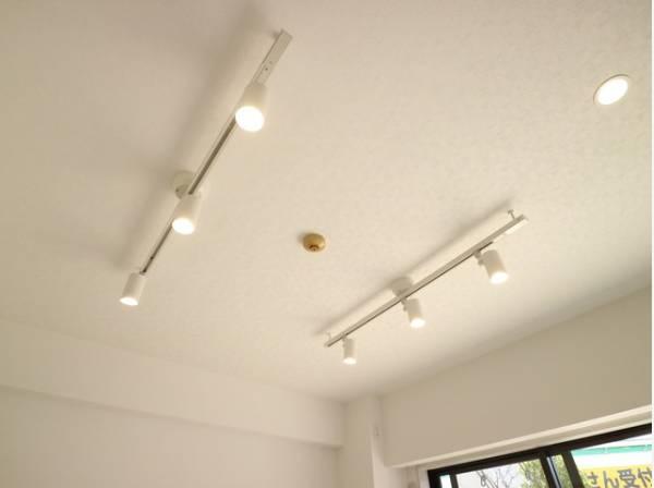 オシャレに飾るレール式の照明器具が付いています。自分好みにライトの位置を変えましょう。