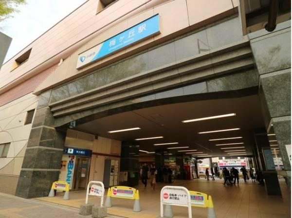 小田急線 梅ヶ丘駅まで900m 羽根木公園の最寄り駅で、梅のシーズンには観梅客で賑わいます。駅周辺は飲食店などが充実しています。