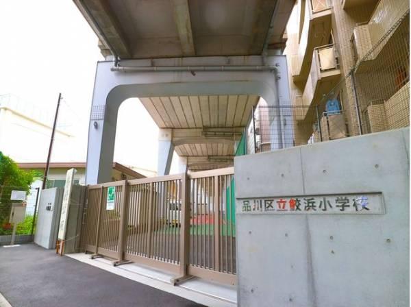 品川区立鮫浜小学校まで350m