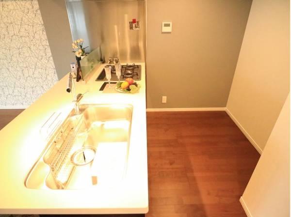 ゆったりと調理ができる位のスペースを実現したキッチン。クリーニングもされ清潔感がございます。