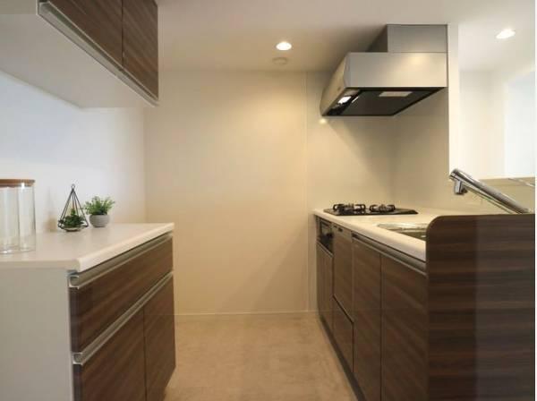 キッチン背面にも収納スペースが設けられています。キッチン家電も置き場に困ることはありません。